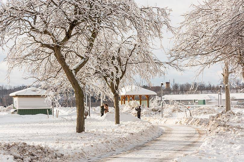 Experience the serenity of Niagara Falls State Park in the winter